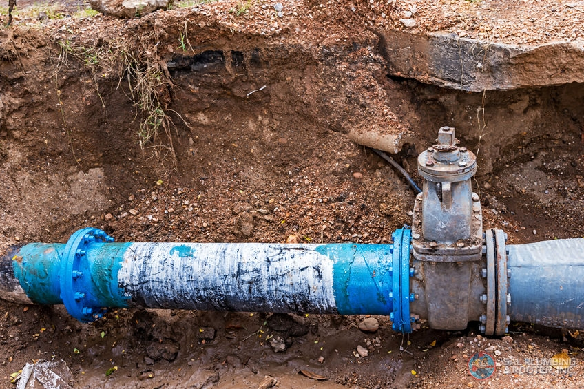 Fixing a water line leak as soon as possible can help prevent further damage to your home.